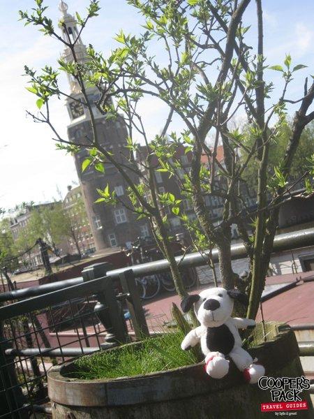 cooper-amsterdam-montelbaanstoren