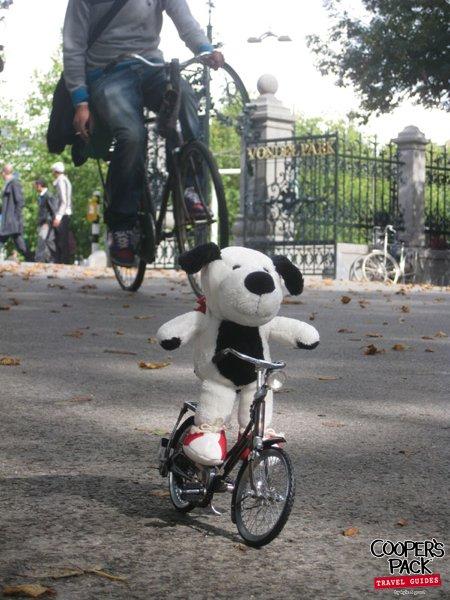 cooper-amsterdam-vondelpark