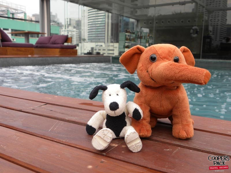 cooper-bangkok-rooftop-swimming-pool