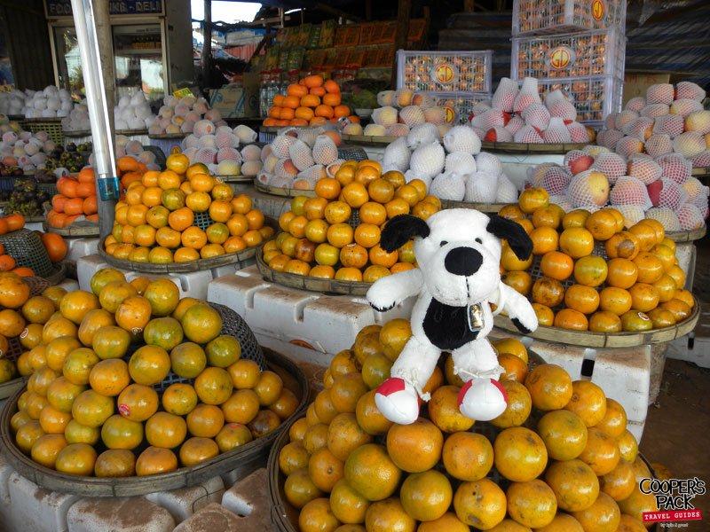 cooper-laos-oranges