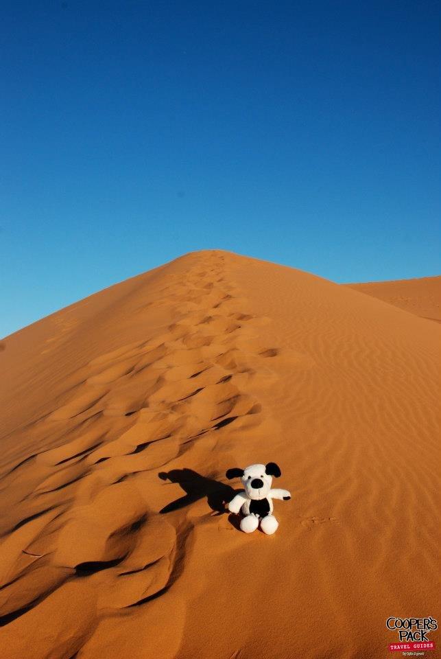 CoopersPack-Morocco-Sahara-Desert-02