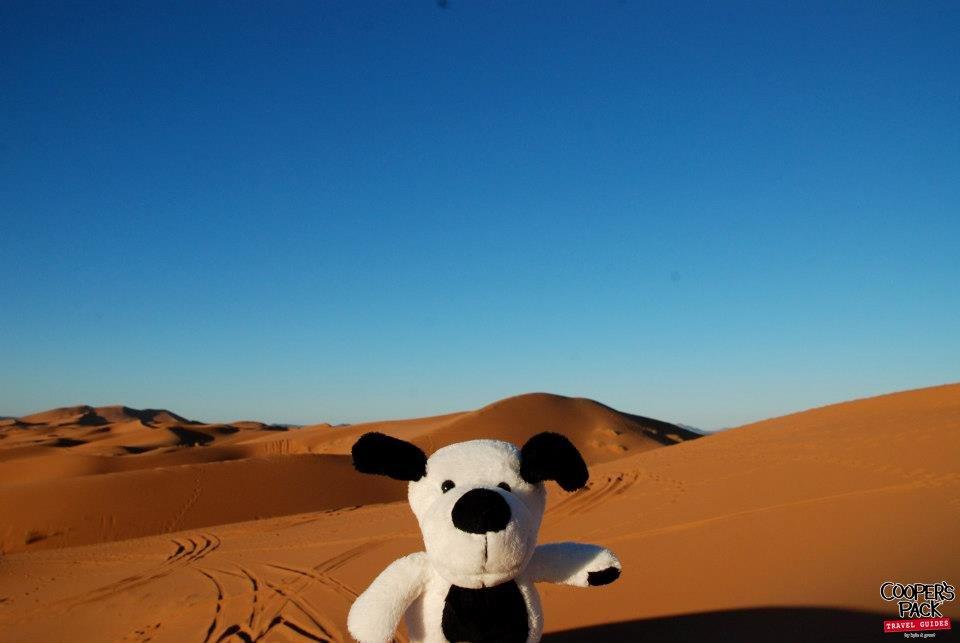 CoopersPack-Morocco-Sahara-Desert-03