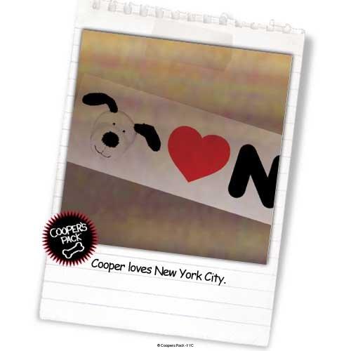 nyc-bb-0303