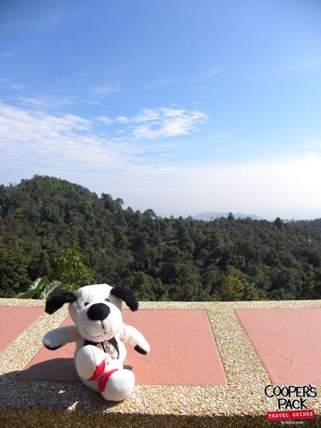 cooper-samui-thailand-hilltoplounge