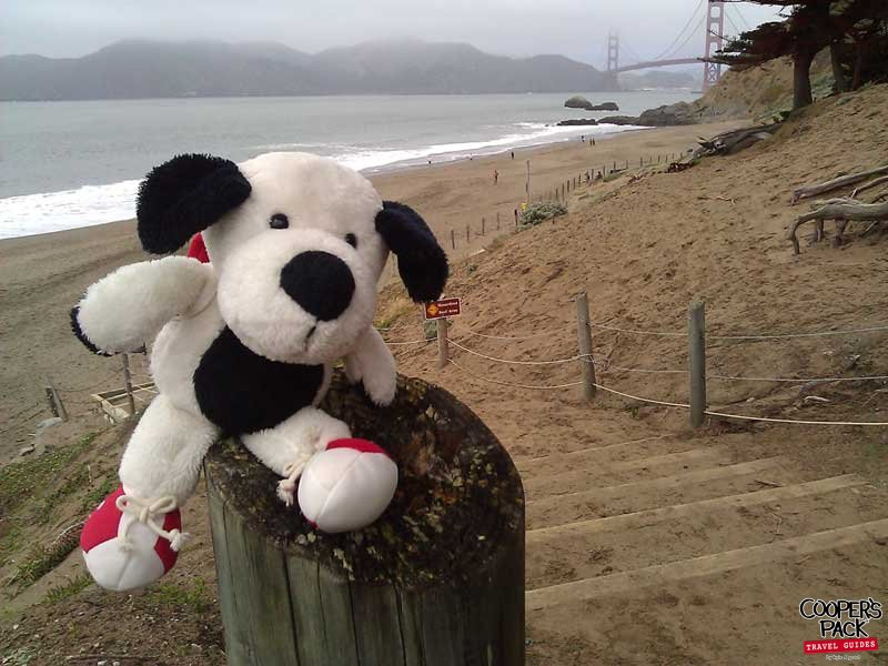Cooper_San-Francisco-Road-Trip2012-Carrie-Brown_02