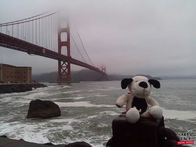 Cooper_San-Francisco-Road-Trip2012-Carrie-Brown_05