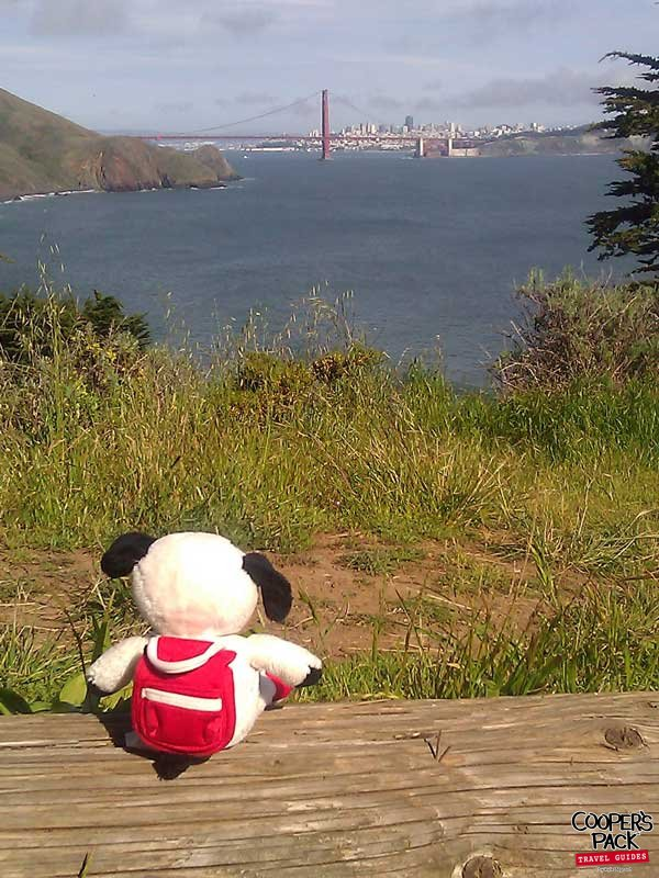 Cooper_San-Francisco-Road-Trip2012-Carrie-Brown_06