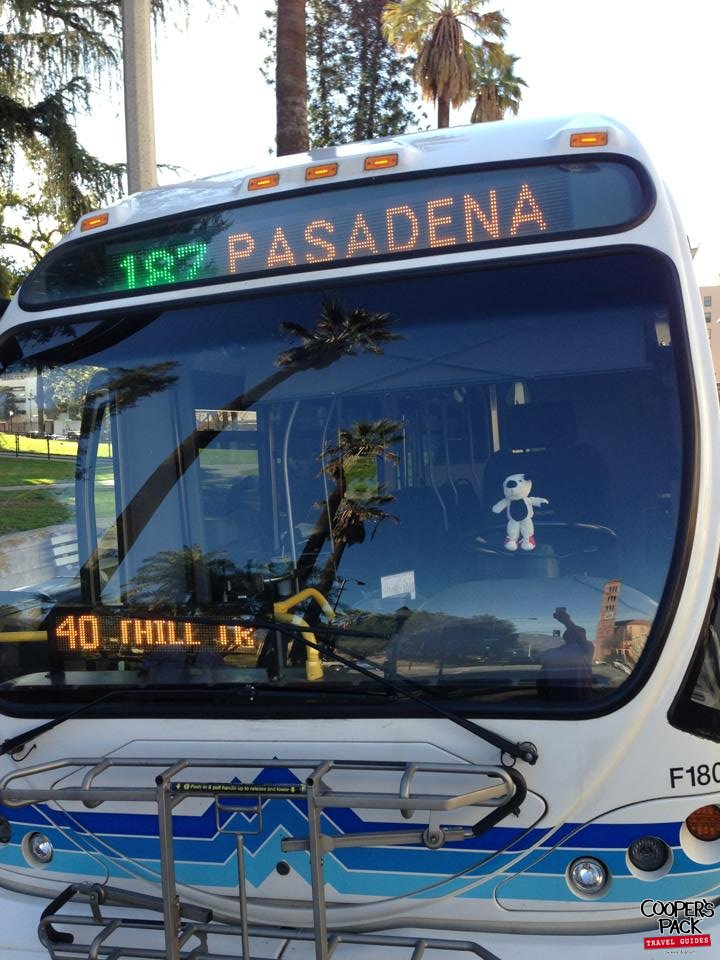 Cooper-Pasadena-Bus