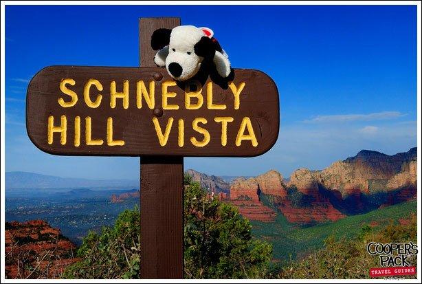 cooper-schneblyhill2