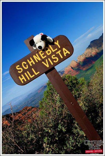 cooper_schneblyhill