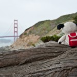 Cooper Was Here Submission Example - Cooper on San Francisco Road Trip 2012 - Carrie Brown 01