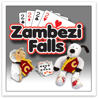 Cooper's Pack Zambezi Falls card game
