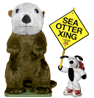 Cooper's Pack Sea Otter Xing 01