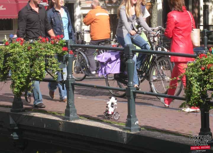 Cooper-Amsterdam-Nieuwe-Spiegelstraat