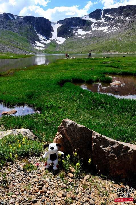 Cooper_glacier-valley