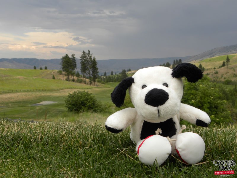 Cooper-Chelan-BearMountainGolf-2