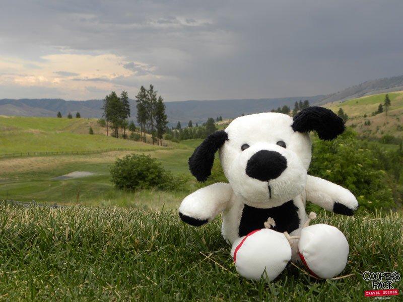 Cooper-Chelan-BearMountainGolf-2