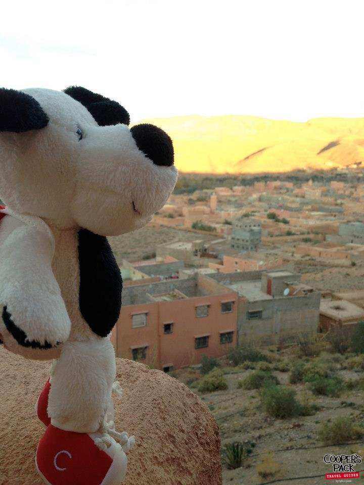 CoopersPack-Morocco-Sunrise