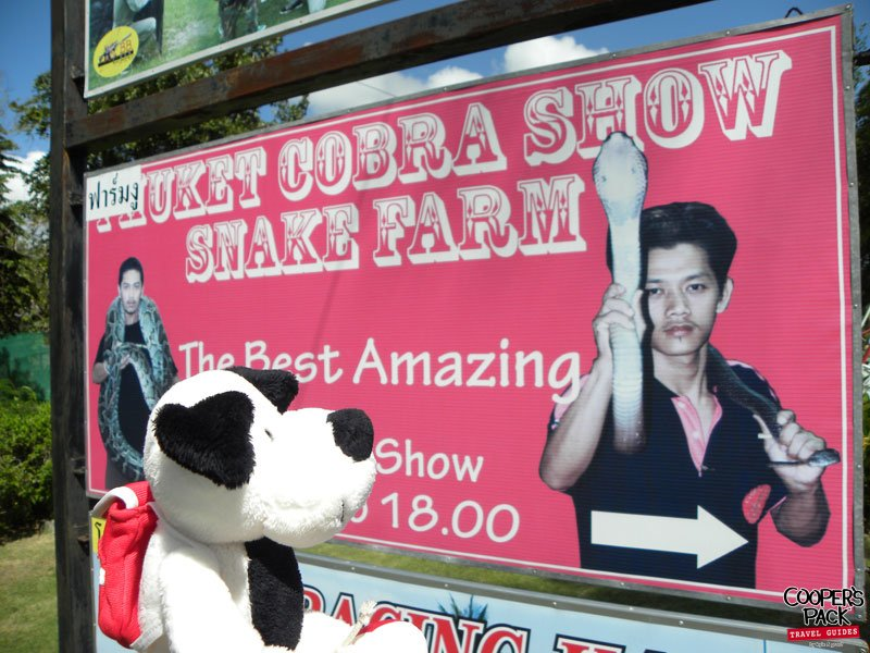 cooper-phuket-thailand-cobrashow