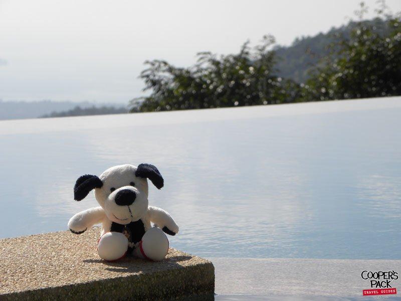cooper-samui-thailand-hilltoppool