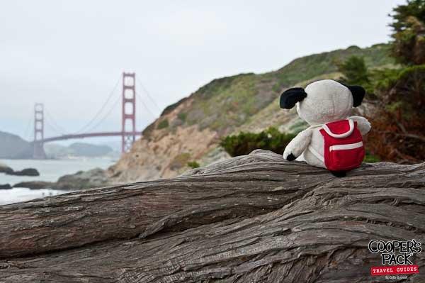 Cooper_San-Francisco-Road-Trip2012-Carrie-Brown_01