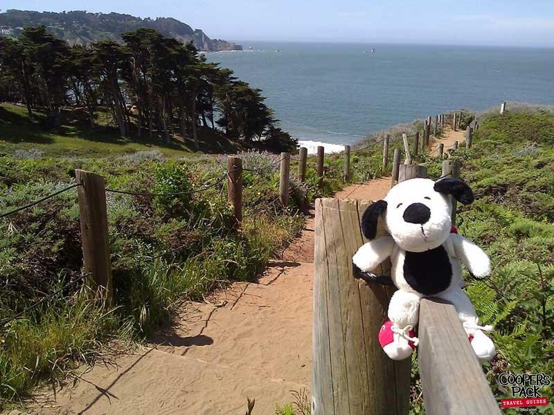 Cooper_San-Francisco-Road-Trip2012-Carrie-Brown_Baker_Beach