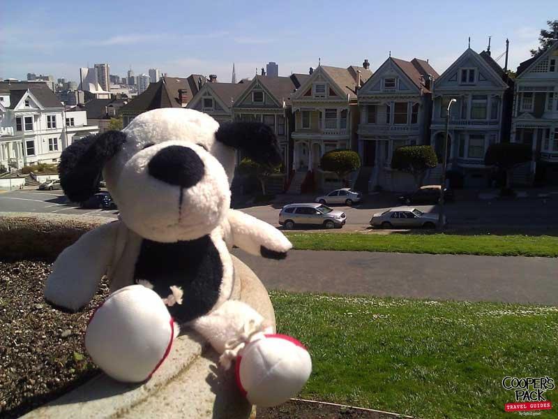 Cooper_San-Francisco-Road-Trip2012-Carrie-Brown_Painted_Ladies