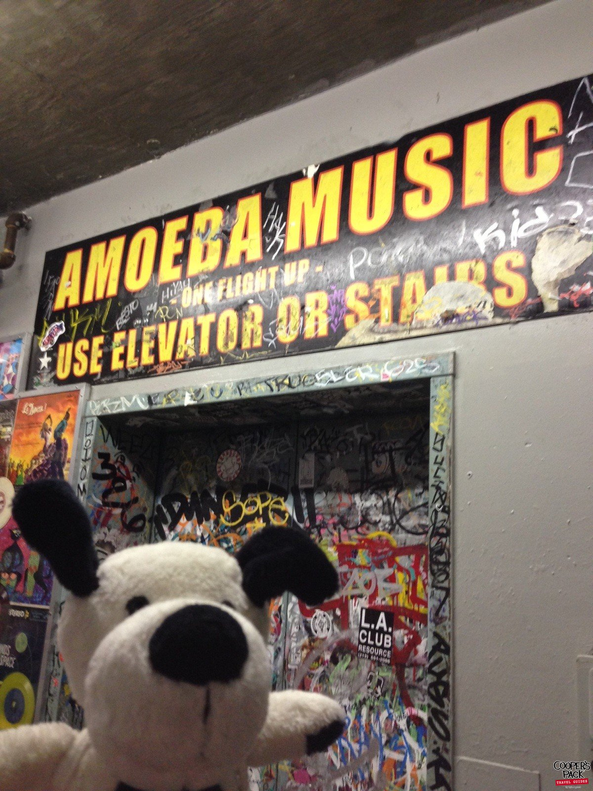 Cooper-Hollywood-Amoeba-Records3
