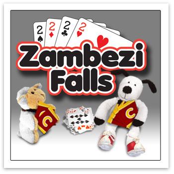 Cooper's Pack Zambezi Falls card game